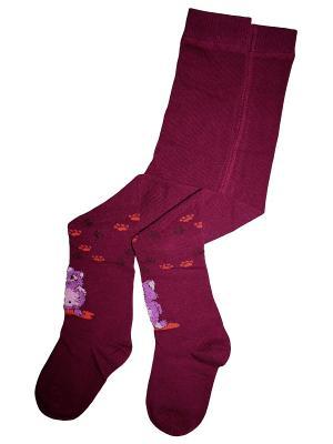 Колготки 1 пара Master Socks. Цвет: фиолетовый