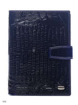 Обложка на автодокументы и паспорт Petek. Цвет: темно-синий, темно-фиолетовый