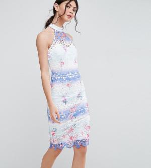 Paper Dolls Tall Кружевное платье-футляр с высоким воротом. Цвет: мульти