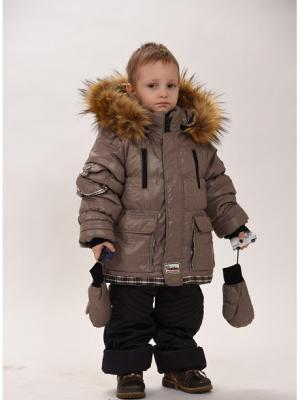 Куртка+брюки для мальчиков TOPKLAER. Цвет: коричневый