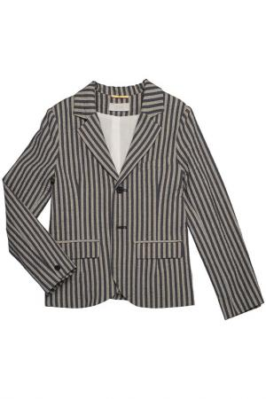 Пиджак Max & Lola. Цвет: серый