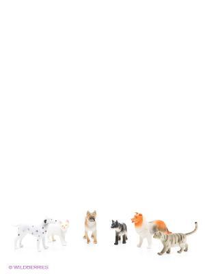 Набор В мире животных 1Toy. Цвет: белый, бежевый