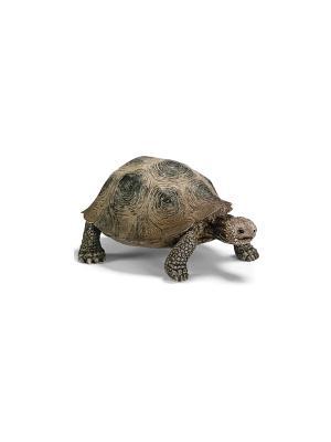 Гигантская черепаха SCHLEICH. Цвет: бежевый, серый