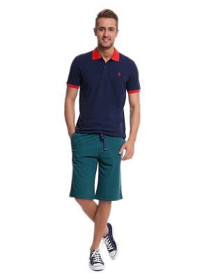 Бермуды U.S. Polo Assn.. Цвет: бирюзовый