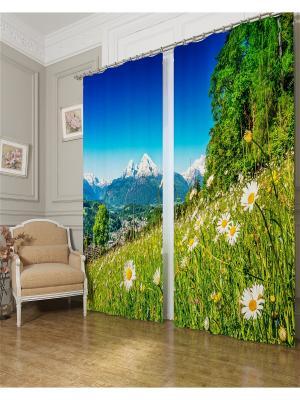 Фотошторы Альпийские травы, Блэкаут Сирень. Цвет: зеленый, серый, голубой, оранжевый, желтый, белый