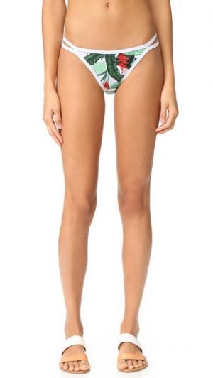 Узкие плавки бикини Oasis Duskii. Цвет: зеленый