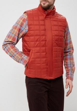 Жилет утепленный Pepe Jeans. Цвет: оранжевый
