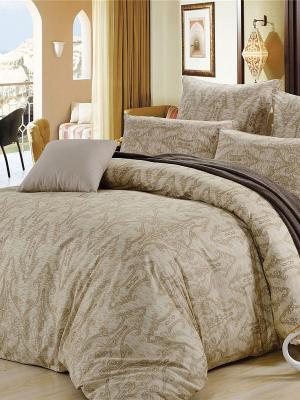 Комплект постельного белья, Пальмира, Семейный KAZANOV.A.. Цвет: бежевый