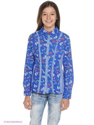 Блузка PELICAN. Цвет: голубой