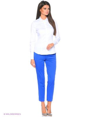Брюки Pantaloni Torino. Цвет: синий