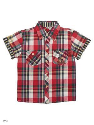 Рубашка Vienetta Kids. Цвет: черный, красный