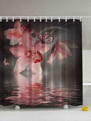 Фотоштора для ванной Яркие бабочки, 180*200 см Magic Lady. Цвет: черный, розовый