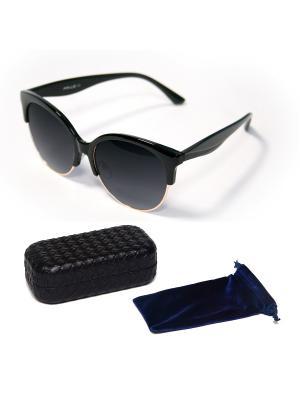 Очки солнцезащитные 6111 + чехол футляр Prius. Цвет: черный