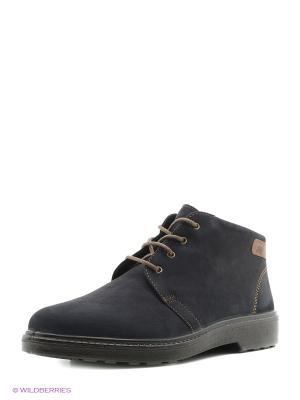 Ботинки BELWEST. Цвет: темно-синий
