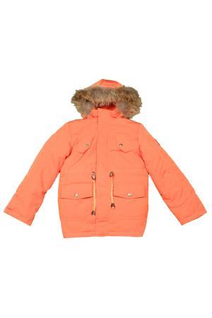 Куртка-парка Arctic Goose. Цвет: оранжевый