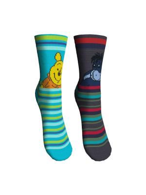 Носки 2 пары Master Socks. Цвет: бирюзовый, темно-серый