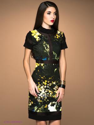 Платье Class Cavalli. Цвет: темно-зеленый, желтый, черный