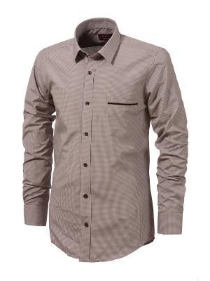 Рубашка BIRIZ. Цвет: терракотовый