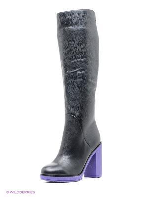 Сапоги Vitacci. Цвет: черный, фиолетовый