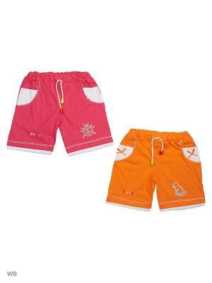 Шорты 2штуки. Babycollection. Цвет: оранжевый, малиновый