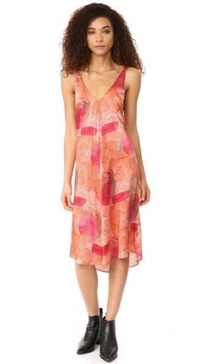 Платье Carly VEDA. Цвет: яркая чаша для фруктов