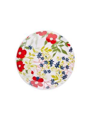 Набор тарелок обеденных САНДЕЙ 28 см 6 шт Biona. Цвет: белый