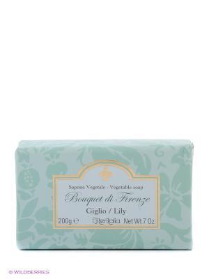 Высококачественное растительное мыло Iteritalia. Цвет: светло-зеленый
