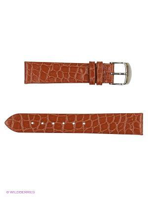 Ремень для часов лаковый J.A. Willson. Цвет: оранжевый