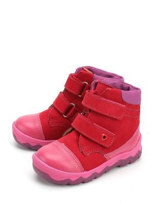 Ботинки ShagoVita. Цвет: фуксия