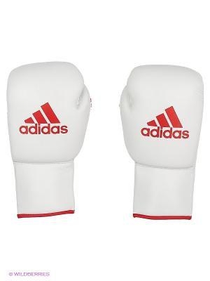Перчатки боксерские Glory Professional Adidas. Цвет: белый