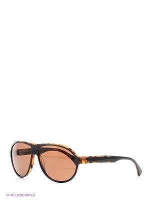 Очки Strellson. Цвет: коричневый