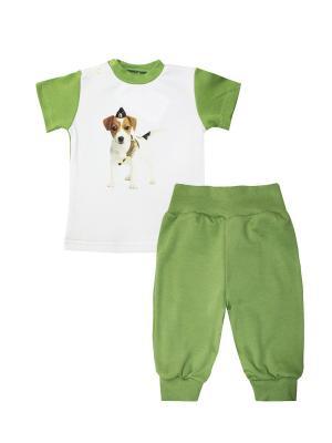 Набор одежды: футболка, штанишки Коллекция Милитари КОТМАРКОТ. Цвет: хаки