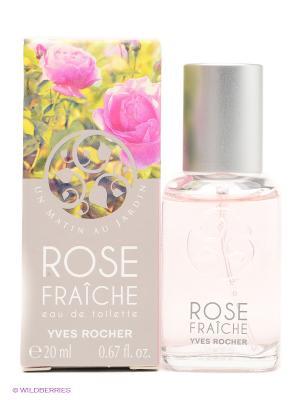 Туалетная Вода Свежая Роза, 20 мл Yves Rocher. Цвет: розовый, зеленый
