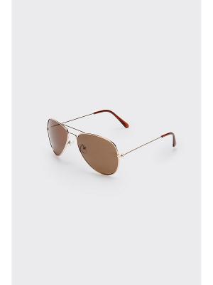Очки солнцезащитные Concept Club. Цвет: коричневый, серебристый