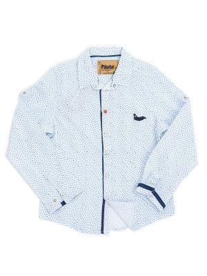 Рубашка Pilota. Цвет: голубой, белый