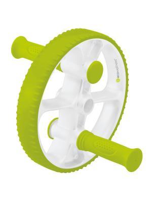 Ролик для пресса зеленый, QB-704G3-B Ecowellness. Цвет: зеленый