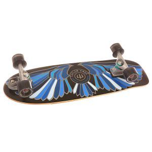 Скейт круизер  C7 Complete Fort Knox Blue 10 x 31.25 (79.4 см) Carver. Цвет: черный,синий