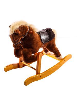 Лошадка-качалка Toyland. Цвет: коричневый