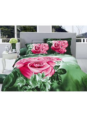 Покрывало евро  2 декоративные наволочки 50*70 Diva Afrodita. Цвет: зеленый