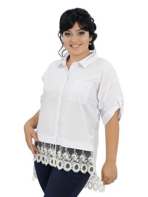 Блузка MAXLINE. Цвет: белый
