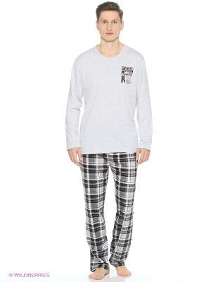 Комплект одежды Vienetta Secret. Цвет: серый