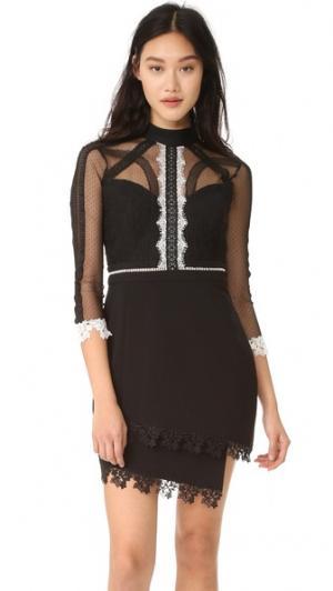 Платье On Point с кружевной вставкой Three Floor. Цвет: черный/белый