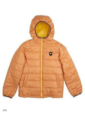 Куртка Senso kids. Цвет: темно-зеленый, бежевый, светло-коричневый, терракотовый