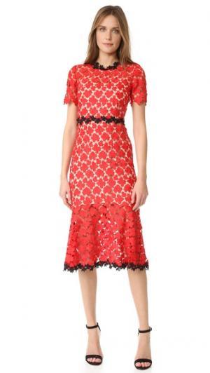Платье из цветочного кружева Jill Stuart. Цвет: красная вишня/черный