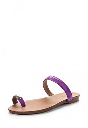 Сабо Inario. Цвет: фиолетовый