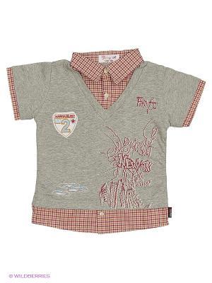 Рубашка DAMY-M. Цвет: бордовый, светло-серый