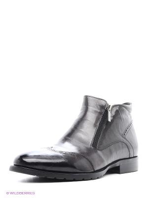 Ботинки Dino Ricci. Цвет: серый