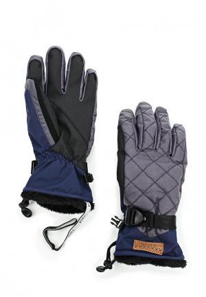 Перчатки горнолыжные Roxy. Цвет: фиолетовый