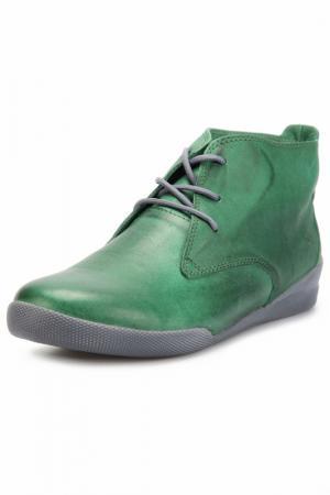 Ботинки Andrea Conti. Цвет: зеленый