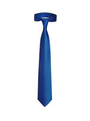 Классический галстук Галантный незнакомец из Вашингтона в мелкий квадрат Signature A.P.. Цвет: синий